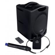 P2 SYSTEM PRZENOŚNY Z USB-MP3 SD CARD + MIKROFONY