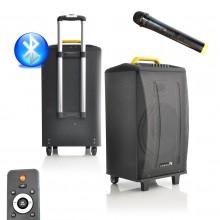 P2 SYSTEM PRZENOŚNY Z RADIEM FM BLUETOOTH USB SD CARD + MIKROFONY