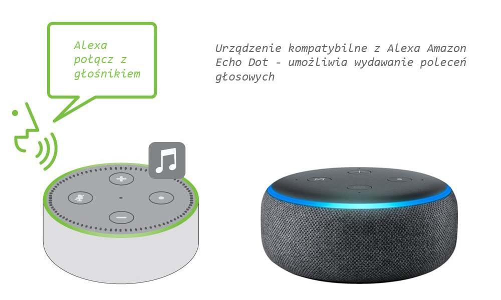 Urządzenie do wydawania poleceń głosowych. Głośnik w kształcie koła