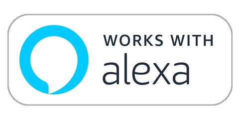 Logo Working With Alex